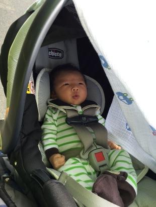 Bennetts first walk
